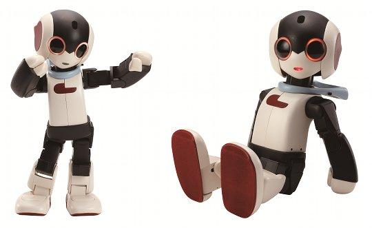Personal Robo   Photo