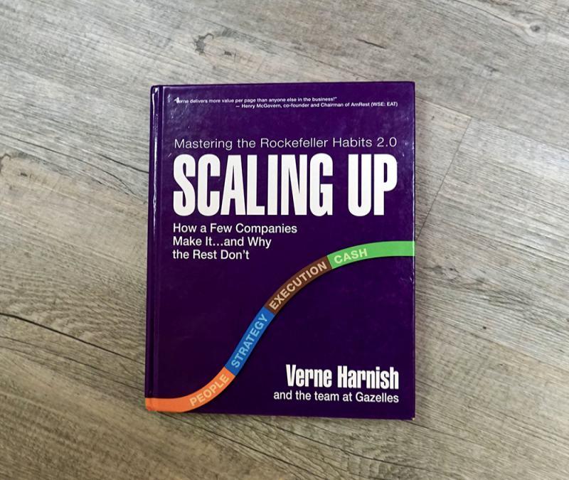 bisnis startup | buku scale up