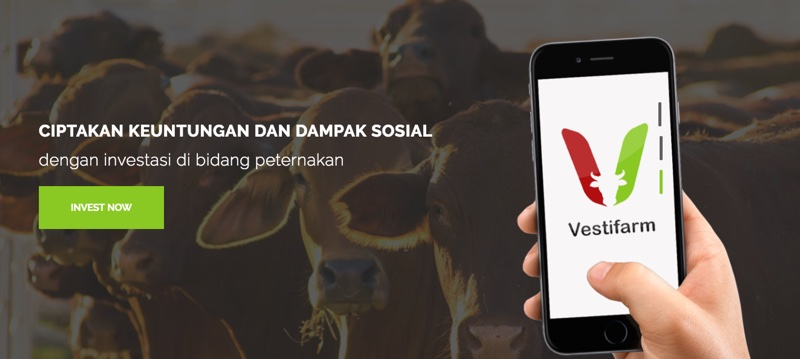 Vestifarm | Screenshot - Apps