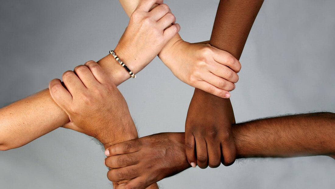 Diversity | Photo 1