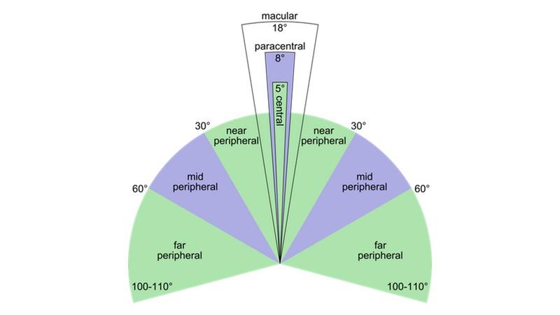 Produk | Peripheral vs Central Vision